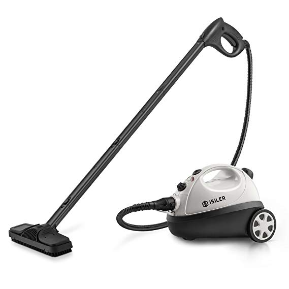 Portable vacuum cleaners